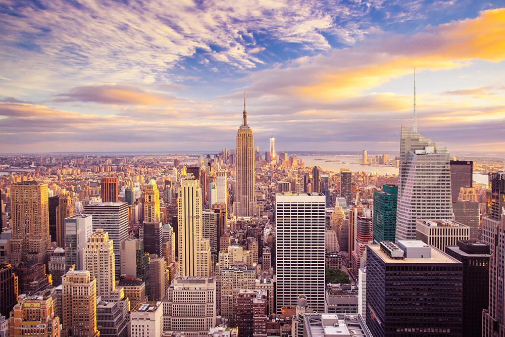 Roof Garden Cooler Skyline New York